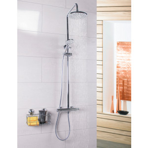 Delta Thermostatic Rigid Riser Shower System